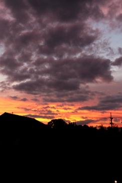 Sunrise - Cat Landrum