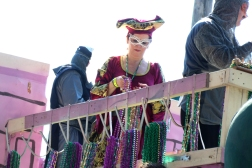 Krewe of Tucks - Cat Landrum