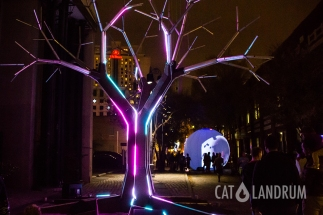 cat_landrum-luna_fete_4706