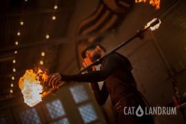 cat_landrum-fire_6576